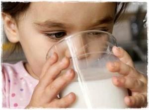 leche vaca2