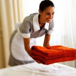 housekeeping-services_10621422_250x250-250x250